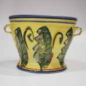 Rebecca Sive Collection
